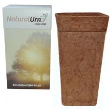 Natural Urn: Tree of Life